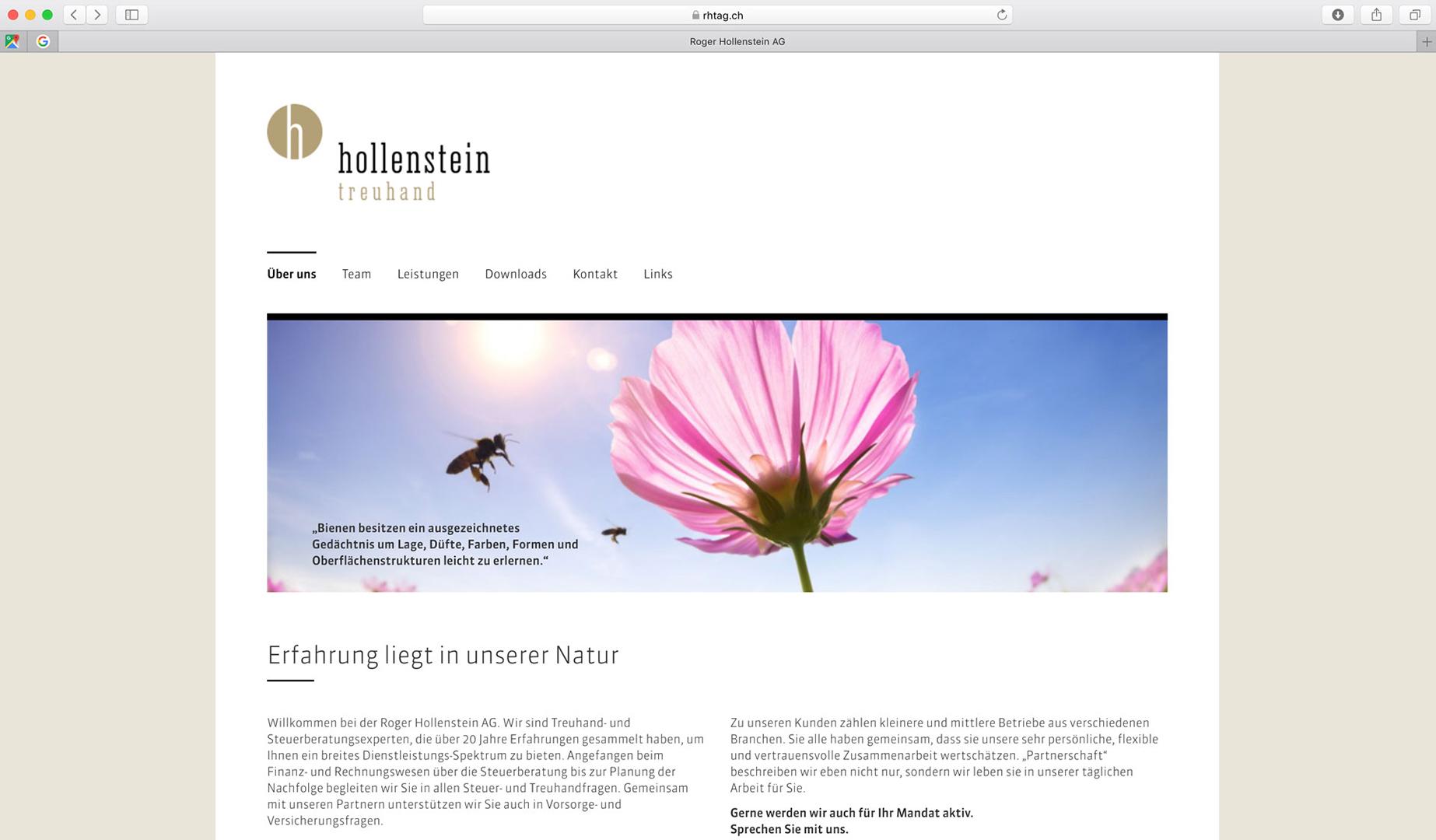 HollensteinTreuhand_Internetseite.jpg