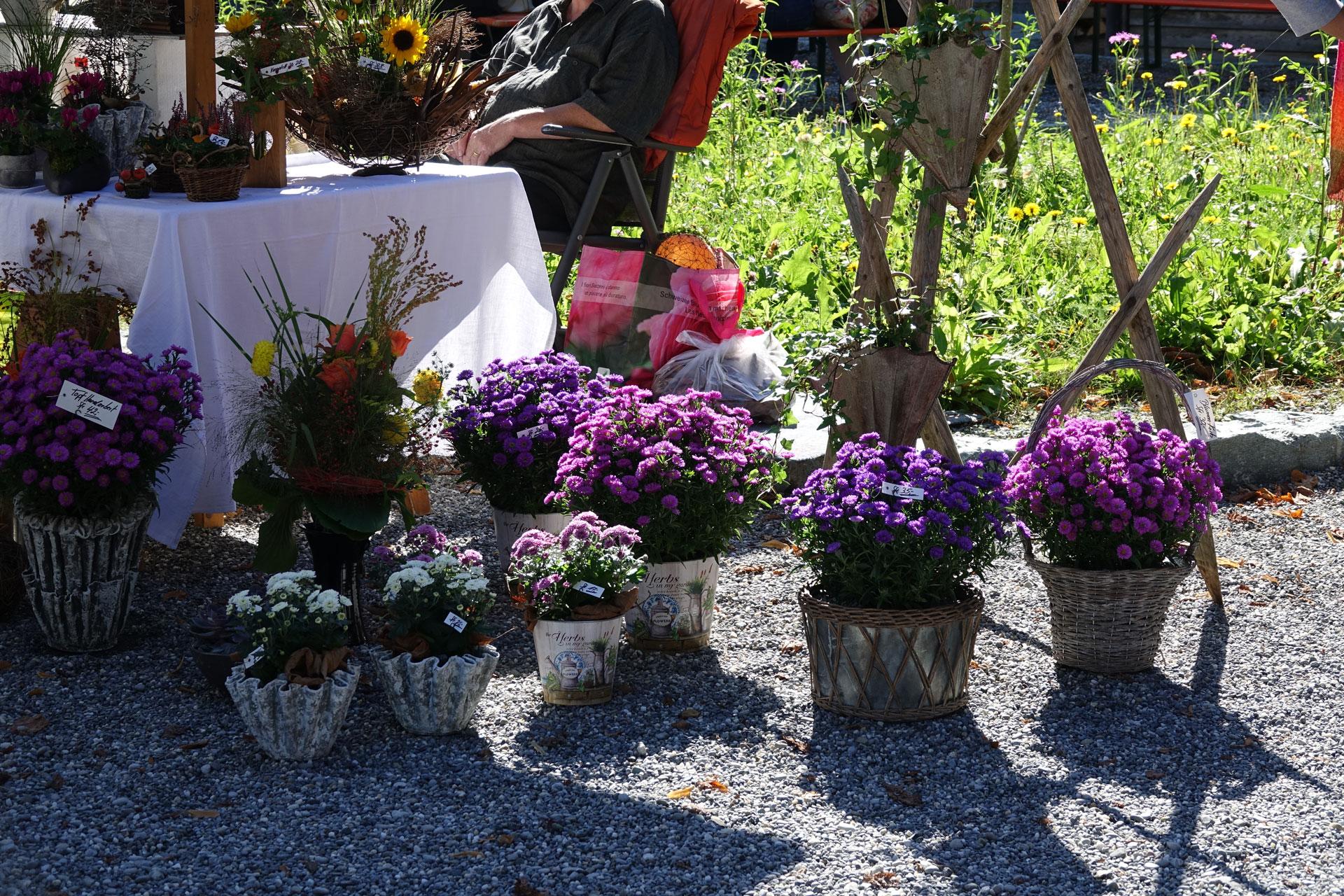 Wartegg_HerbstmarktFest2019_09.JPG
