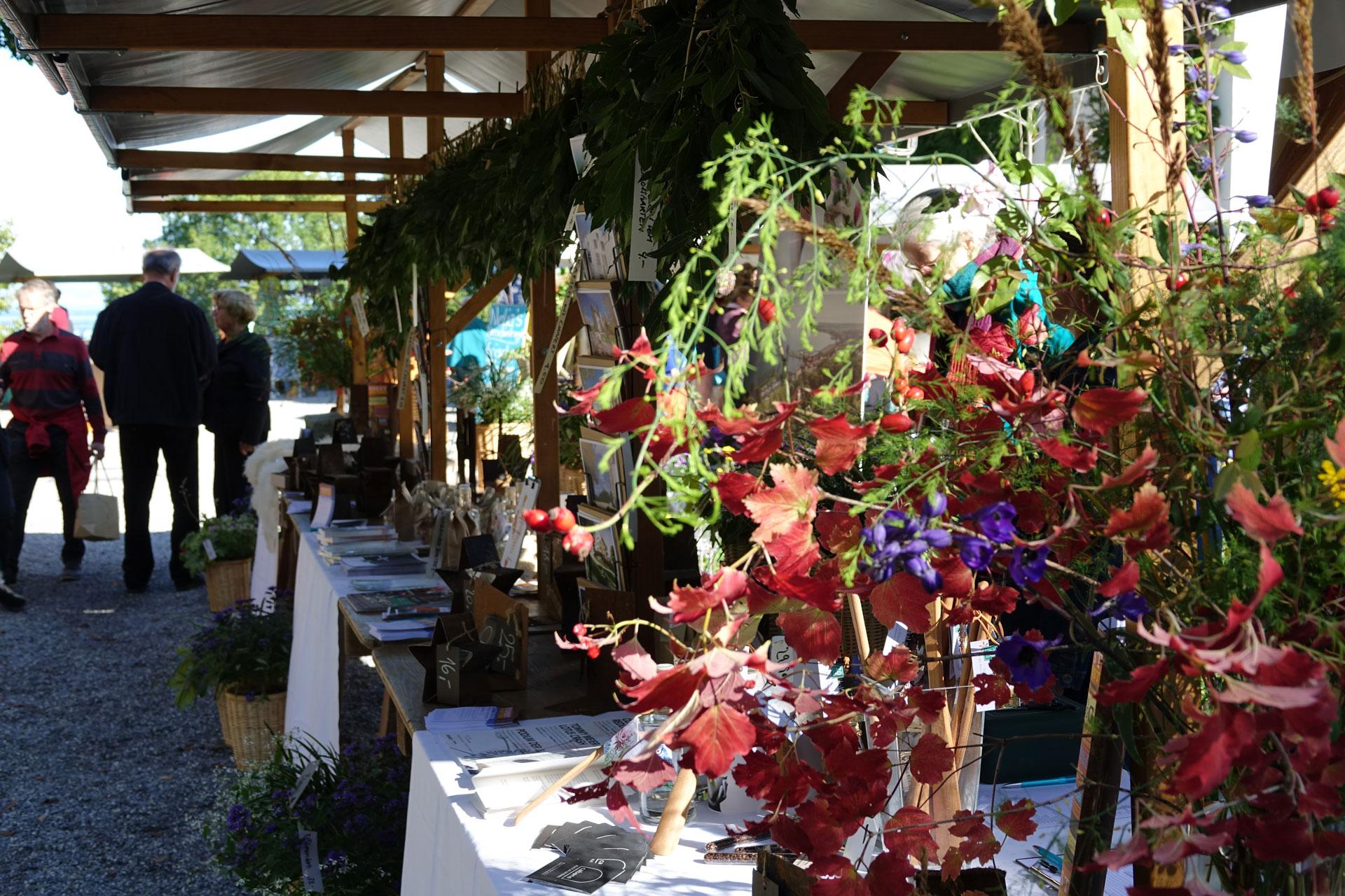 Wartegg_HerbstmarktFest2019_07.JPG