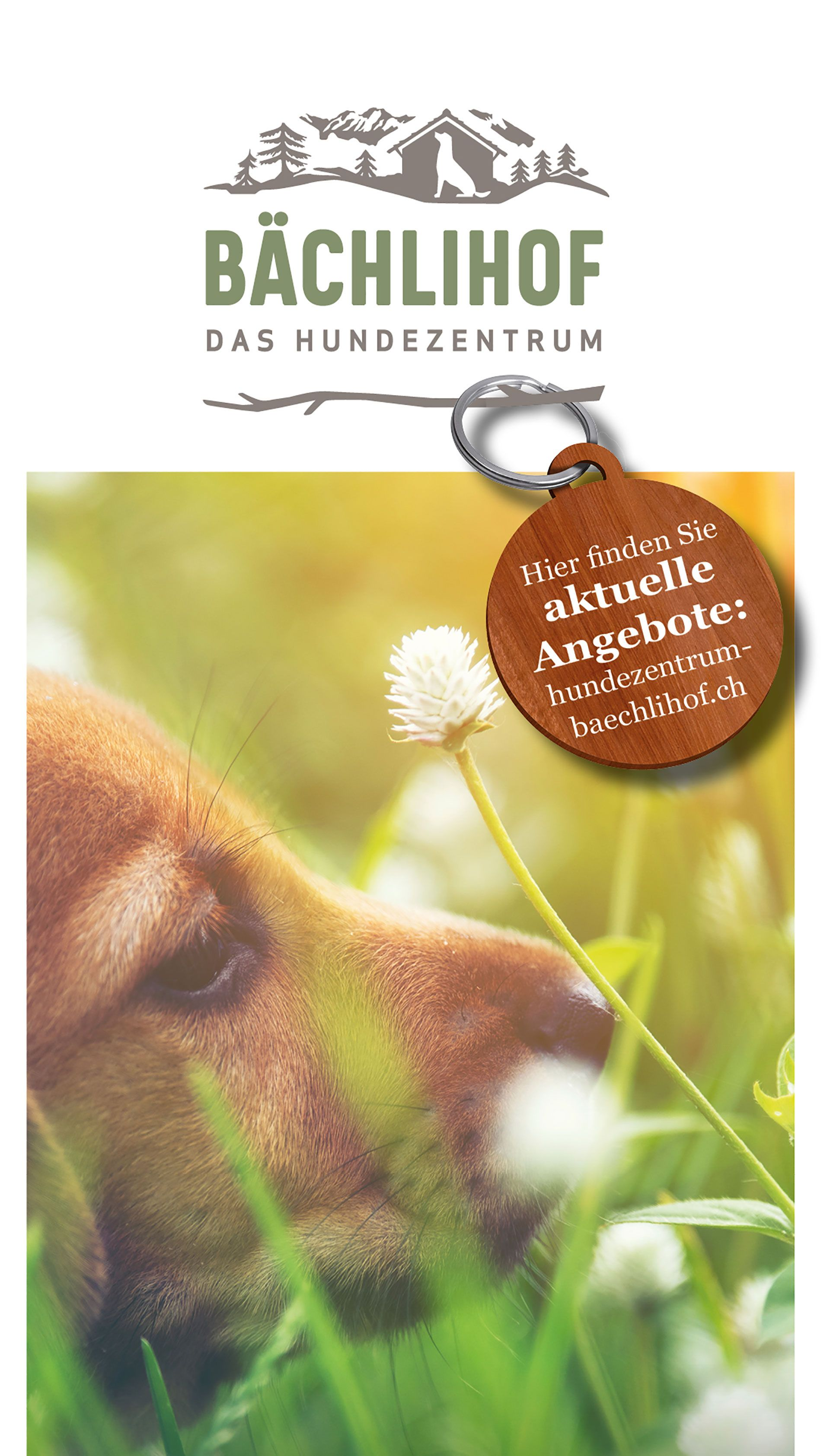 Baechlihof_Hundezentrum_Preisliste2021.jpg